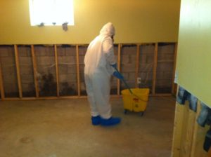 Southern Ontario mould removal