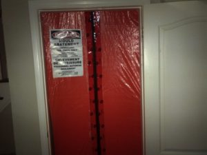 Toronto residential mould removal