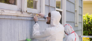 Ontario lead paint removal