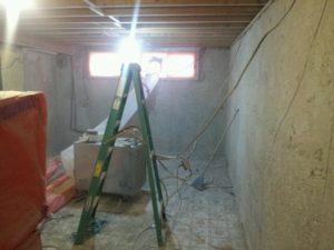 Toronto mold removal