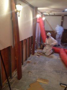 Toronto professional mould removal company